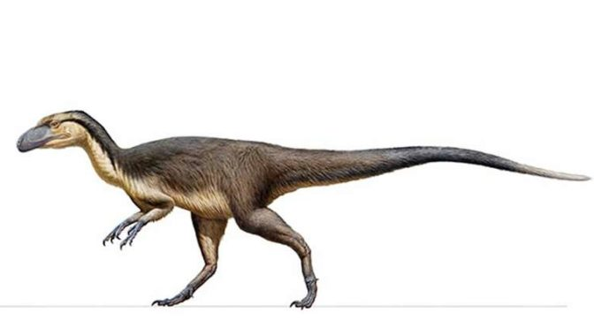 Fluffy Dinosaurs Actually Existed and Lived at the South Pole, Scientists Discover